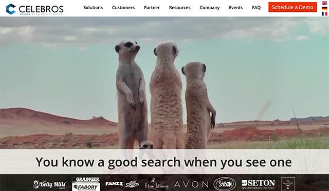 celebros.com